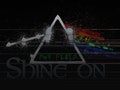 Shine On - Pink Floyd Tribute event picture