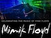 An Evening of the Best of Pink Floyd: Mimik Floyd event picture