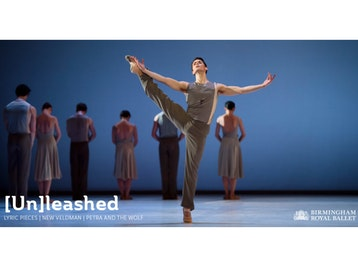 [Un]leashed: Birmingham Royal Ballet picture