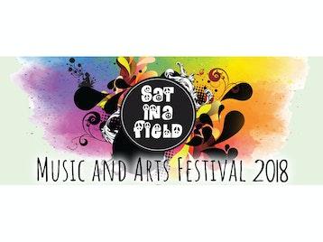 Sat In A Field Festival picture