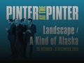 Pinter At The Pinter - Landscape / A Kind Of Alaska: Tamsin Greig event picture