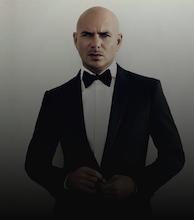 Pitbull artist photo