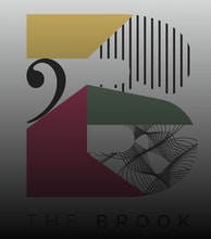 The Brook artist photo