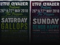 Little Cavalier Festival 2018 event picture