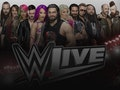 WWE Live: World Wrestling Entertainment (WWE) event picture