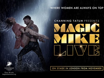 Magic Mike Live picture