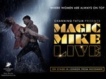Magic Mike Live artist photo
