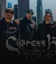 Cypress Hill artist photo