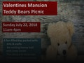 Teddy Bears Picnic event picture