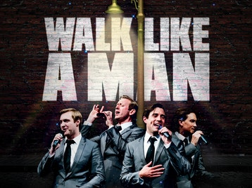 Walk Like A Man picture
