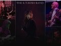 The KT Bush Band event picture