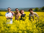 The Lafontaines artist photo
