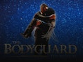 The Bodyguard (Touring), Alexandra Burke event picture