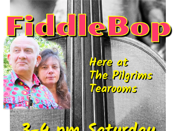 Brecon Festival Fringe: FiddleBop! picture