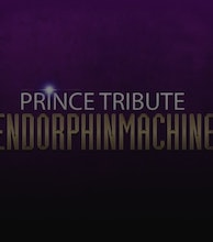 Prince Tribute EndorphinMachine artist photo