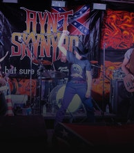 Aynt Skynyrd artist photo