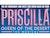Priscilla Queen Of The Desert - The Musical (Touring)