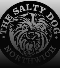 The Salty Dog artist photo