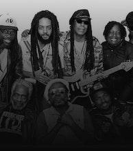 The Wailers artist photo