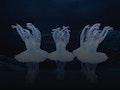 Derek Deane's Swan Lake: English National Ballet (ENB) event picture