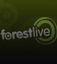 The Forestry Commission presents Forest Live 2019 artist photo