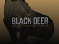 Black Deer Festival 2019: John Butler Trio, Hayseed Dixie event picture