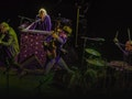 The Waterboys event picture