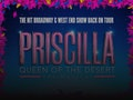 Priscilla Queen Of The Desert - The Musical (Touring), Joe McFadden event picture