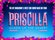 Priscilla Queen Of The Desert - The Musical (Touring)