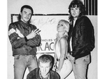 Amyl And The Sniffers artist photo