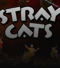 The Stray Cats artist photo