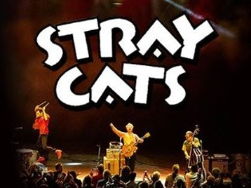 40th Anniversary Tour: The Stray Cats, The Living End, The Selecter picture