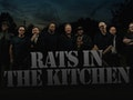 The Big Nite Out - UB40 Tribute Band: Rats In The Kitchen event picture