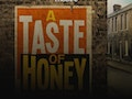 A Taste Of Honey (Touring) event picture