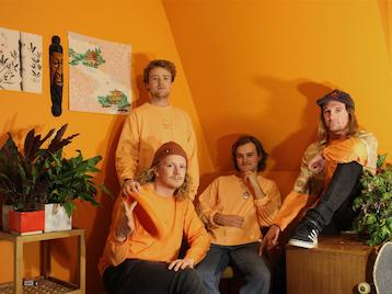 Mild Orange picture