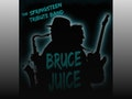 A Tribute to Bruce Springsteen: Bruce Juice event picture