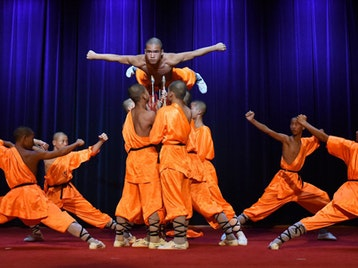 The Warrior Monks: Shaolin Warriors picture