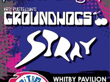 Whitby Rocks: Zal Cleminson's Sin Dogs, Ken Pustelnik's Groundhogs, Stray picture