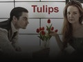 Tulips - Guildford Fringe Festival event picture