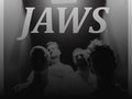 Jaws event picture