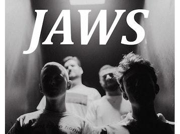Jaws artist photo
