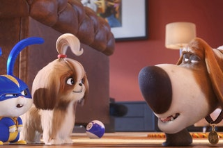 Image for The Secret Life Of Pets 2