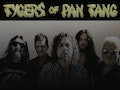 Tygers Of Pan Tang event picture