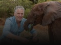 Animal Families And Me: Gordon Buchanan event picture