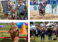 Dogsfest West: 20% off tickets