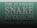 'Caprice Enchanté' Album Launch: The St Pierre Snake Invasion, No Violet, JOHN event picture
