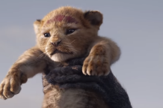 Image for The Lion King (Live Action)