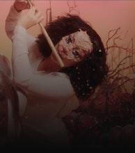 Björk artist photo