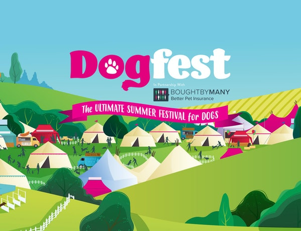 DogFest 2021 - South