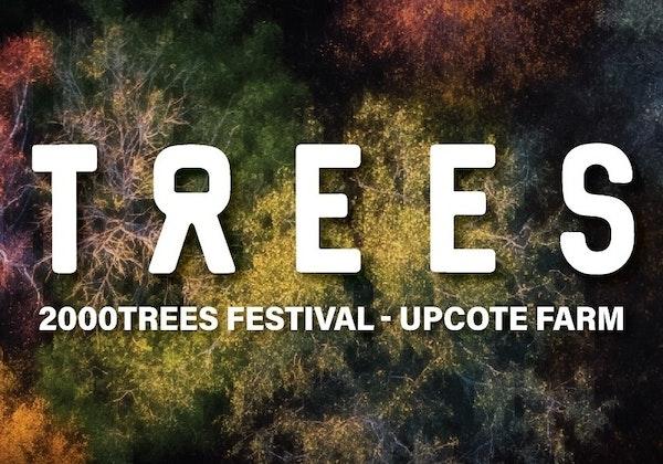 2000Trees 2021